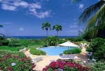Barbados Real Estate / by Totally Barbados