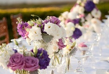 wedding in purples / by la Ricki