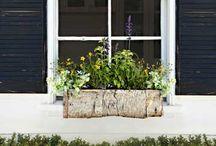 Window Boxes / by Windsor Windows & Doors