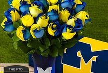 Michigan Wolverines!!!! / by Chynna Francis