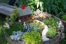 Fairy Gardens / I can't help it. They are so cute. / by Tammy: PinkSparkleAndLace