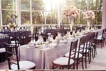 Wedding / by Samantha Hall