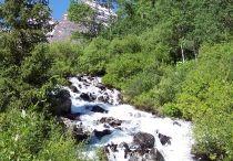 favorite things in Aspen / by Clair Long