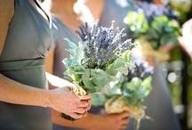 Wedding Flowers / by Tara W
