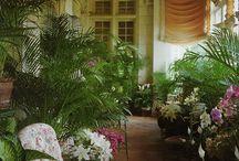 Sunroom: Orangerie: Conservatory: Glasshouse / by Linda James