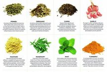 Benefits of Spices and Herbs / by Danielle Carre