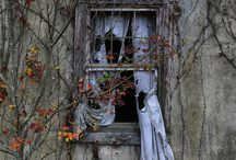 abandoned / by Dawnmarie Jackson