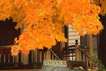 L is for Leaves / Beautiful fall scenery / by Monte Vista Christian School