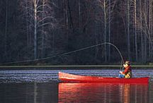 Things To Do in NC / by Kelly R.