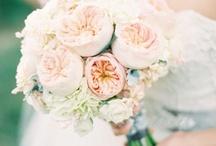 Wedding Ideas / by Sara Barela