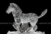 Imaginative Ice Art / by TraceyJean
