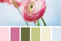 Colour combos / by Lisa Nowacki