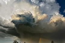 rainbows / by Chante Siciliano
