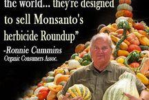 No GMOs / by Patty Najafabadi