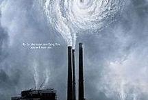 Environmental Films / by Rex Turgano