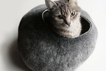 Furry Friends / by L Kuttig