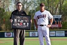 Mules Baseball / by UCM Athletics