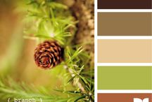 Color, Texture & Design / by Cherie Willingham Graupman