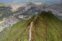Hawaii Trip 2014 / by Stacy Cappaert