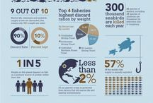 Infographic / by Lorri Smyth