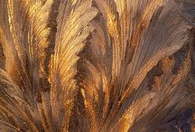 texture, patina, decay / by motheaten