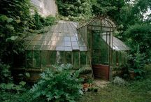 greenhouse and shed / by Mary Hobson