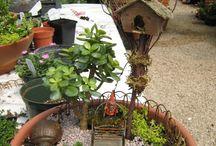 Miniature gardens / by Cindy Lucas