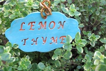 Garden _Decor & Projects / Ideas for the yard and garden. / by 4everflowers