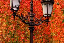 Autumn~Love!! My Favorite Season! / by Tonya Paul-Gex