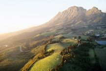 Winelands / by Cape Classics