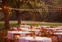 Party Planning Ideas / by Cassandra Myers