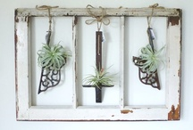 Etsy Finds / by Kirstin Hoffmann