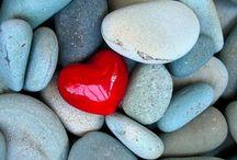 Photo's I love... / by ☀️Tracy Woodard