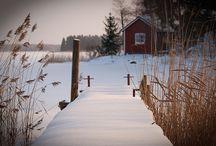 Snow Snow Snow / by Erica Riggs