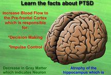 PTSD/TBI Healing Trauma / PTSD/TBI healing, trauma / by Rita Gramme