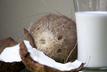 Coconut / by Barbara Centofante