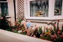 gardens  / by Forgotten Stitches