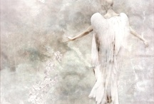angels in the air / by Gail Wolfe