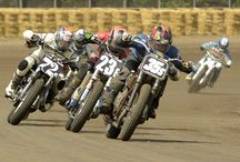 2014 Springfield Mile II / Photos from the second annual series running at the Illinois State Fairgrounds. / by AMA Pro Flat Track