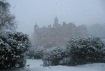 Winter Wonderland / by Carissa Hutchinson
