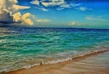 On the Beach / by Melisa Medina