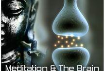 Meditation / Passages Addiction Treatment Center (855) 861-6181  / by Passages Addiction Treatment Centers