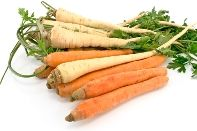 {Get Cultured} / Fermentation, kefir & kombucha galore! / by {Organic Candles}