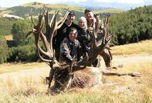 Hunting New Zealand / by Hunting TrophyExperts