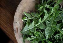 forage / by Nourished Kitchen
