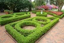 gardens / by antonio Aguilar