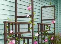 Garden ideas / by Lorie Morrow