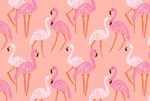 Prints & patterns / by Abbey R