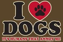 So TRUE / Yep, So TRUE! / by Pam's Dog Academy