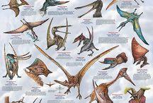PASSION: Paleontology / by Dominic Jones